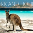 Work And Holiday Visas